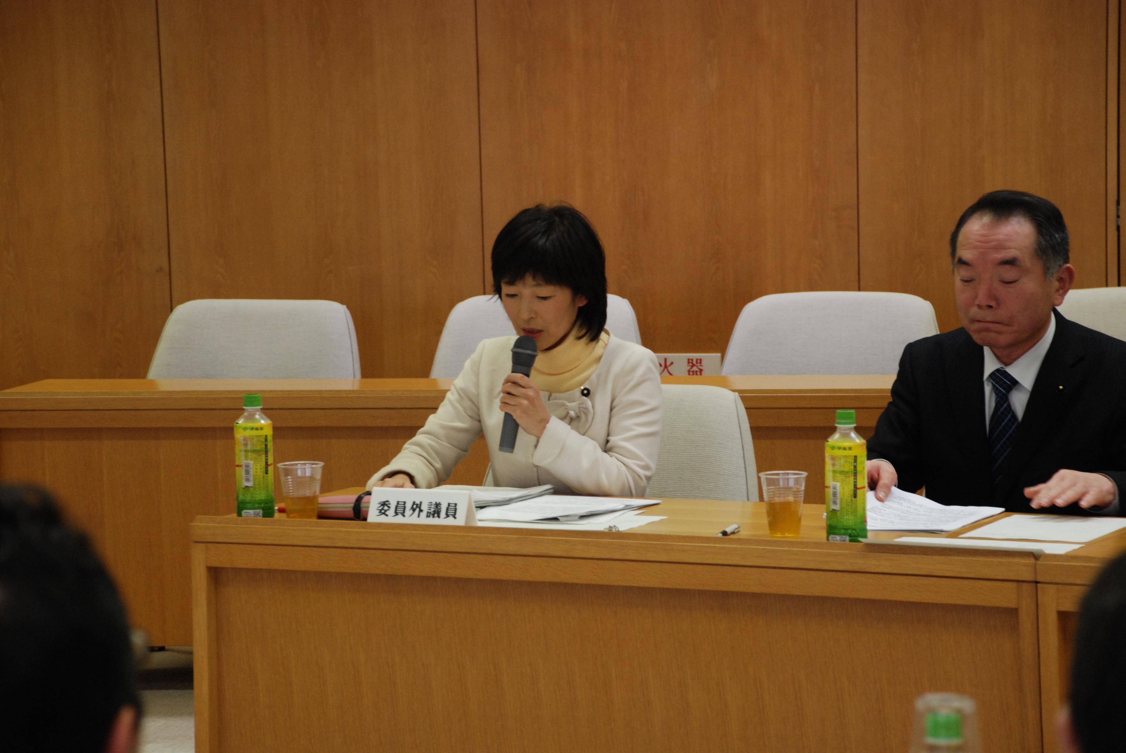 県議会行革特別委員会で意見表明(12月26日)